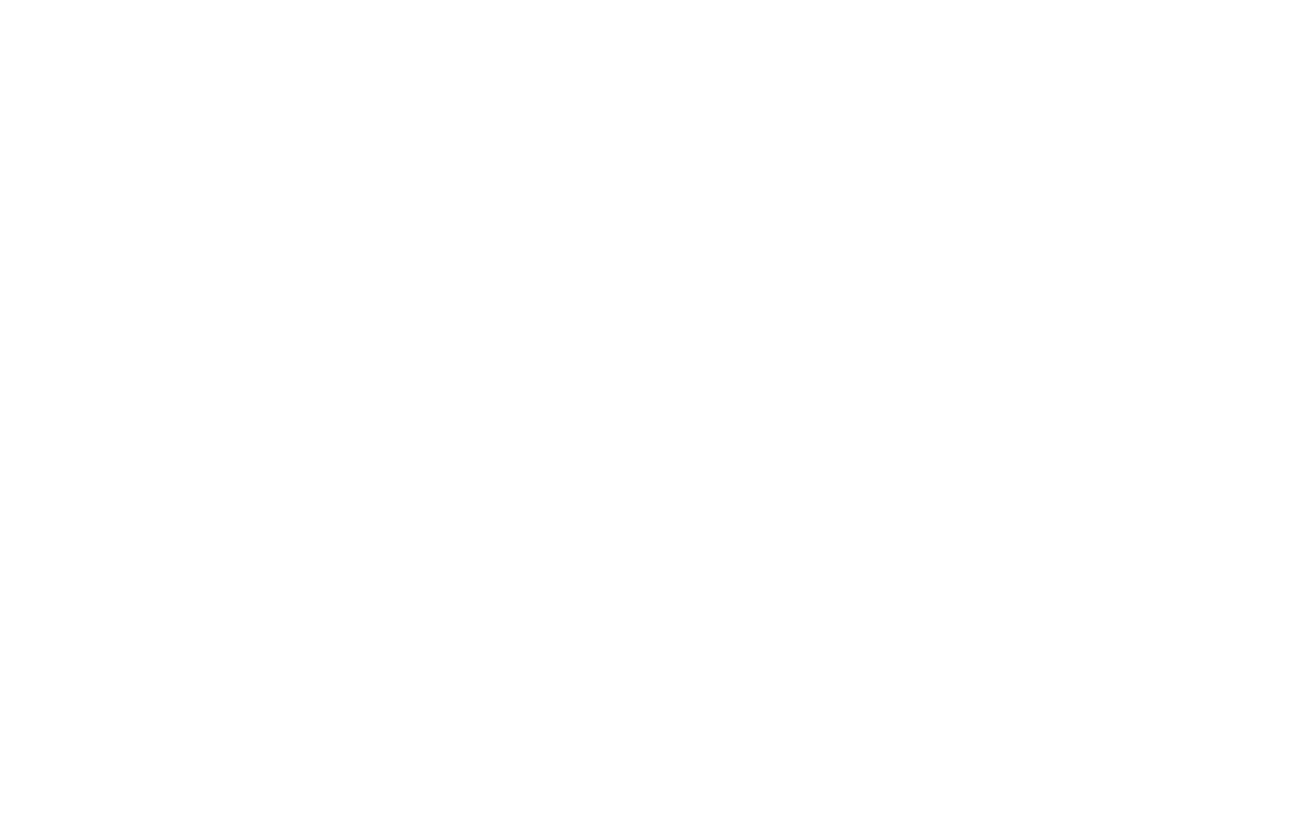 Awning Operator with Lever